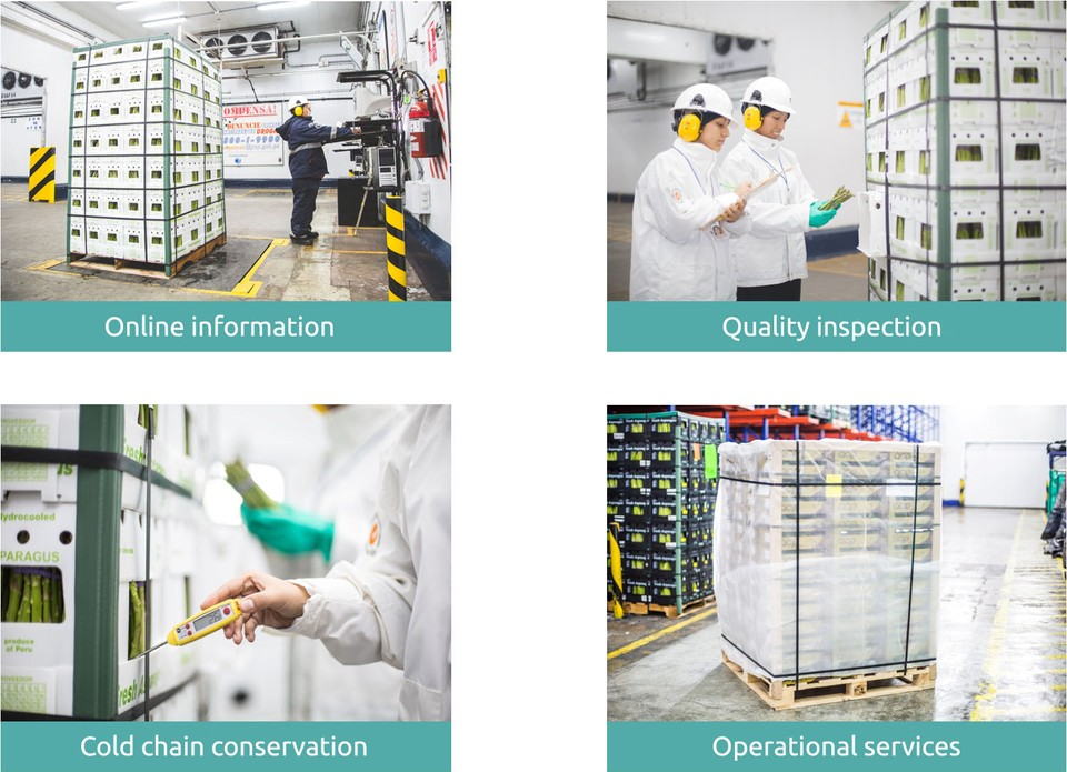 Frío Aéreo offers a range of services and products for perishable exportations fulfilling international standards of quality and safety that markets demand.