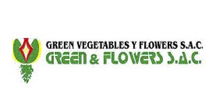 GREEN VEGETABLE FLOWERS